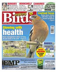 Cage & Aviary Birds issue No.5842 Glowing with Health
