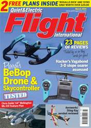 Quiet & Electric Flight Inter issue March 2015