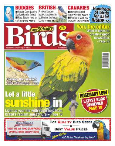 Cage & Aviary Birds issue No.5843 Let a Little Sunshine in