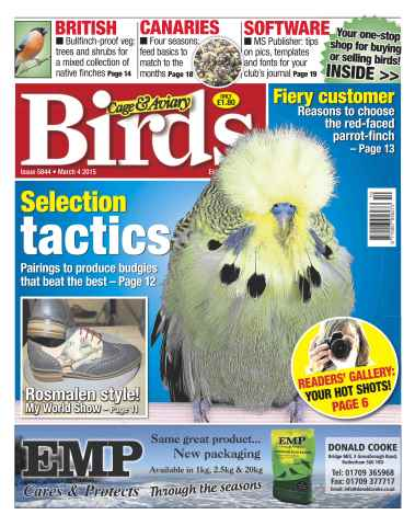 Cage & Aviary Birds issue No.5844 Selection Tactics
