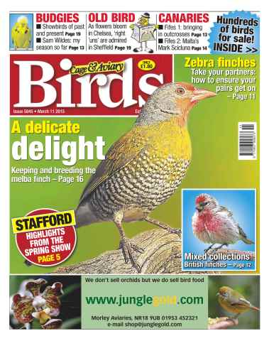 Cage & Aviary Birds issue No.5845 A Delicate Delight