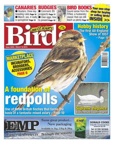 Cage & Aviary Birds issue No.5846 A Foundation of Redpolls