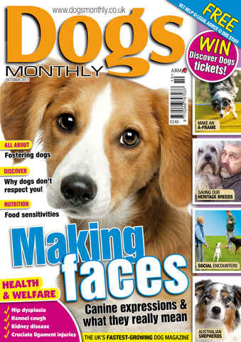Dogs Monthly issue October2011