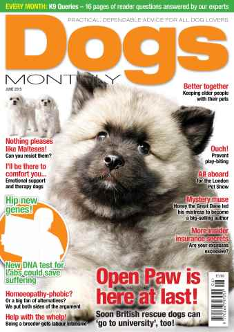 Dogs Monthly issue June 2015