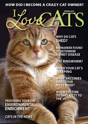 I Love Cats issue Spring 2015